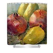 Pomegranates And Pears Shower Curtain by Jen Norton