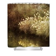 Pond's Edge Shower Curtain by Julie Palencia