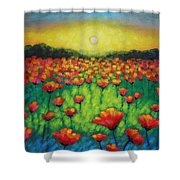 Poppies At Twilight Shower Curtain by John  Nolan