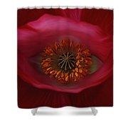 Poppy's Eye Shower Curtain by Barbara St Jean