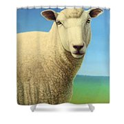 Portrait of a Sheep Shower Curtain by James W Johnson