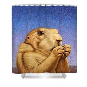 Prairie Dog Shower Curtain by James W Johnson