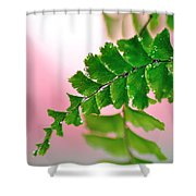 Pretty Maiden Shower Curtain by Kaye Menner