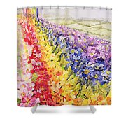 Primrose Rainbow Shower Curtain by Joan Thewsey