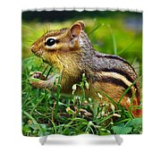 Princess Buttercup Shower Curtain by Bill Caldwell -        ABeautifulSky Photography