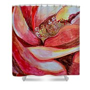 Promise Of Love Shower Curtain by Sonali Gangane