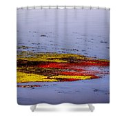 Psychedelic Algae  Shower Curtain by Thomas Young