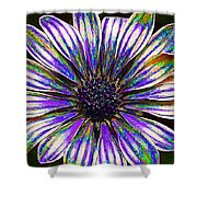 Psychedelic Daisy Shower Curtain by Bill Caldwell -        ABeautifulSky Photography