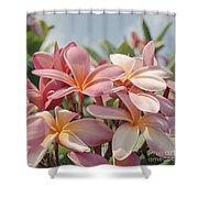 Pua Melia Ke Aloha Maui Shower Curtain by Sharon Mau