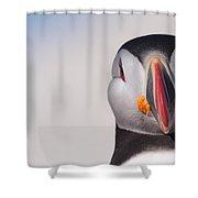 Puffin Mug Shot Shower Curtain by Bruce J Robinson