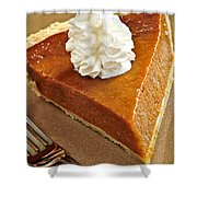 Pumpkin Pie Shower Curtain by Elena Elisseeva