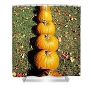 Pumpkins In A Row Shower Curtain by Anonymous