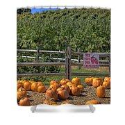 Pumpkins On The Farm Shower Curtain by Joann Vitali