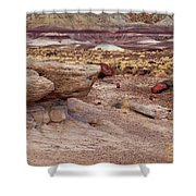 Purple Earth Shower Curtain by James Peterson