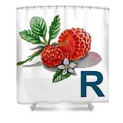 R Art Alphabet For Kids Room Shower Curtain by Irina Sztukowski