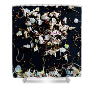 Rain Of Petals Shower Curtain by Edgar Laureano