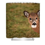 Rain Soaked Shower Curtain by Karol  Livote