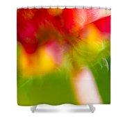 Rainbow Flower Shower Curtain by Darryl Dalton