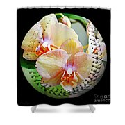 Rainbow Orchids Baseball Square Shower Curtain by Andee Design