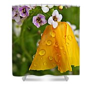 Rained Upon Shower Curtain by Chris Berry