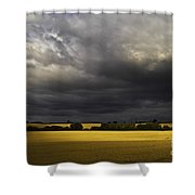 Rapefield Under Dark Sky Shower Curtain by Heiko Koehrer-Wagner