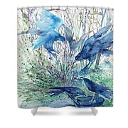 Ravens Wood Shower Curtain by Trudi Doyle