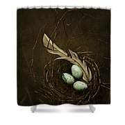 Rebirth Shower Curtain by Amy Weiss