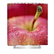 Red Apple Shower Curtain by Elena Elisseeva