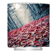 Red Carpet Shower Curtain by Edward Fielding