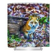 Red Fox At Home Shower Curtain by John Haldane