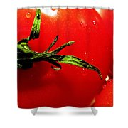 Red Hot Tomato Shower Curtain by KAREN WILES