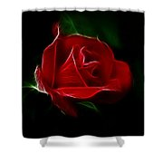 Red Rose Shower Curtain by Sandy Keeton