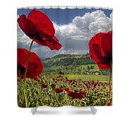Red White And Blue Shower Curtain by Debra and Dave Vanderlaan