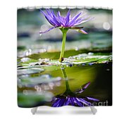 Reflection Of Life Shower Curtain by Charles Dobbs