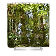 Reflection of woods Shower Curtain by Sonali Gangane