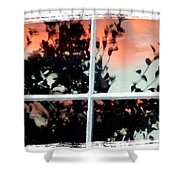 Reflections In An Old Window Shower Curtain by Will Borden