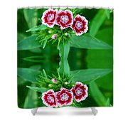 Reflections of a Summer Bouquet Shower Curtain by Aimee L Maher Photography and Art