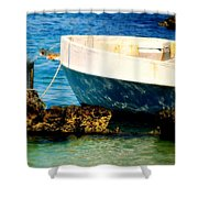 Reflective Bow Shower Curtain by Karen Wiles
