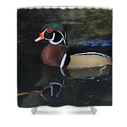 Reflective Wood Duck Shower Curtain by Deborah Benoit