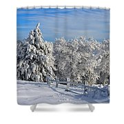 Refresh Shower Curtain by Lois Bryan
