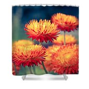 Release My Voice Shower Curtain by Sharon Mau