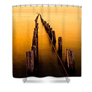 Remnants Shower Curtain by Chad Dutson