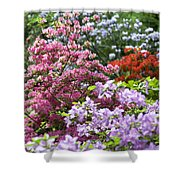 Rhododendron Garden Shower Curtain by Frank Tschakert