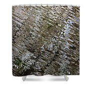 Ripples In The Swamp Shower Curtain by Carol Groenen