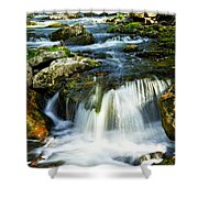 River flowing through woods Shower Curtain by Elena Elisseeva