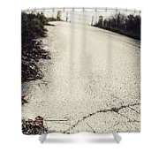 Road Less Traveled Shower Curtain by Margie Hurwich