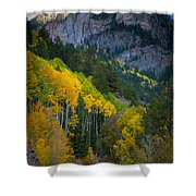 Road To Silver Mountain Shower Curtain by Inge Johnsson