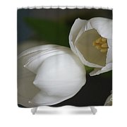 Romantic White Shower Curtain by Carol Lynch