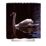 Romeo or Juliet Shower Curtain by Rona Black