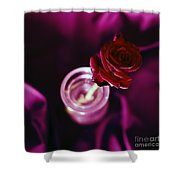 Rose Shower Curtain by Stelios Kleanthous